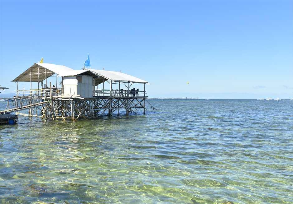 オランゴ島フィッシュサンクチュアリー<br /> 沢山の魚たちが集まる