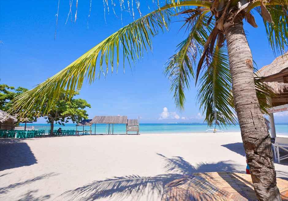 美しい景色を一望するカオハガン島のビーチ