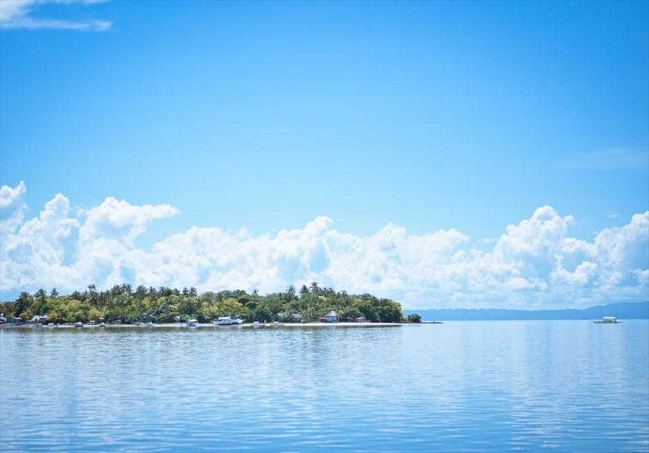 カオハガン島<br /> 美しい熱帯雨林