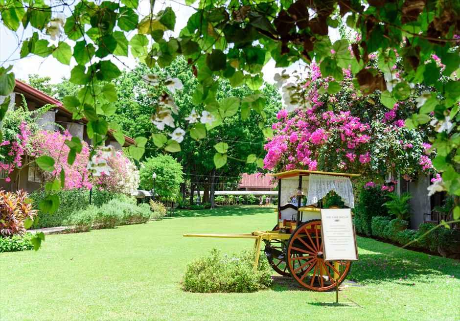 モンテベッロ・ヴィラ・セブ・シティ ガーデンウェディング 挙式会場 ガーデン ブーゲンビリア