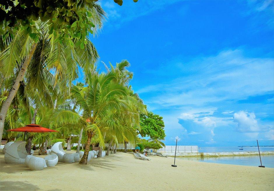 コスタベラ・トロピカル・ビーチ・ホテル熱帯雨林が生い茂る美しいビーチ
