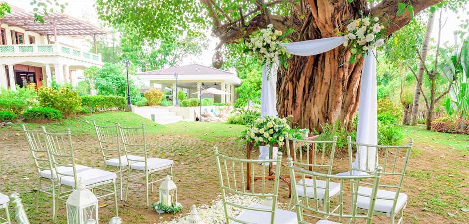 Circa 1900 Tree Garden